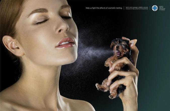 Ayúdenos-a-combatir-los-efectos-del-Testing-en-cosmética