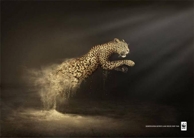 La-desertificación-destruye-6000-especies-cada-año2