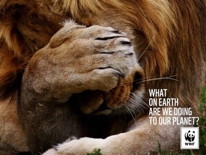 Qué-diablos-estamos-haciendo-con-nuestro-planeta