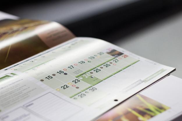 calendarios-2016_pared