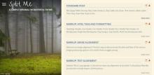 mejores-themes-responsive-wordpress-gratis-split-me